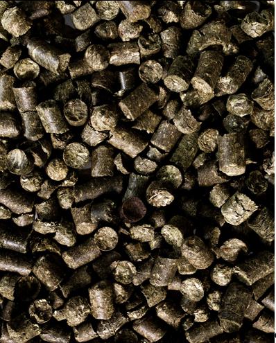 Grünmehlpellets (10-12mm) 25kg