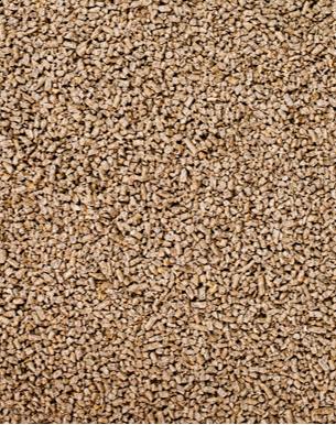 Küken & Junghennen Aufzuchtbrösel GVO frei + COC 25kg