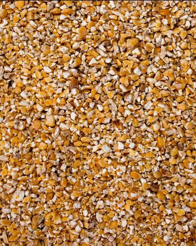 Mais gebrochen GVO frei 25kg