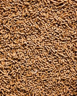 Sojaextraktionsschrotfutter GVO frei gepresst 48% Protein 25kg