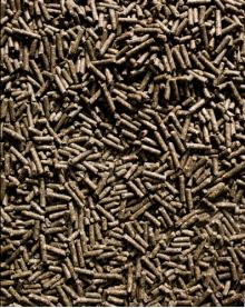 Grünmehlmixpellets (3mm) 25kg